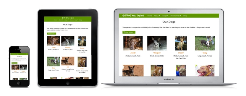 Screenshots of the PAWS Petfinder API on an iPhone, iPad, and laptop